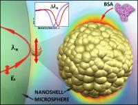 Nano-Detection