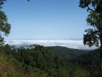 Hukaung Valley
