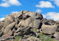 North America's Oldest Petroglyphs