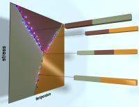 Vanadium Dioxide Triple Point