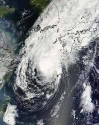 MODIS Sees Toraji