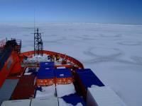 Australian Icebreaker