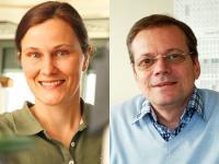 Silke Bühler-Paschen and Andrey Prokofiev, Vienna University of Technology