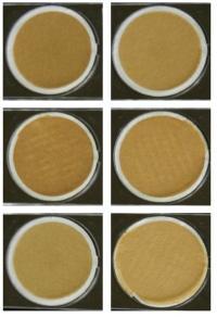 Air Filter Samples