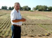 Dr. Dariusz Malinowski, Texas A&M AgriLife Research