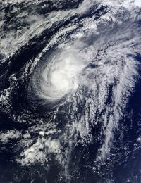 MODIS Image of Lorenzo