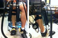 MIT's Anklebot