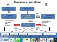 2 Workflows