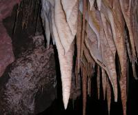 Stalactites in Kartchner Caverns