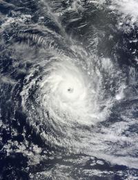 MODIS Image of Bruce