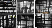 TEM Micrographs