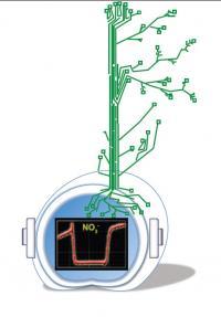 NiTrac Sensor