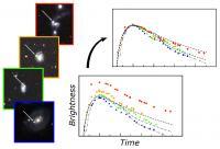 Many Type Ia Supernovae