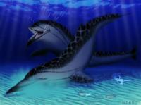 Skimmer Porpoise Reconstruction