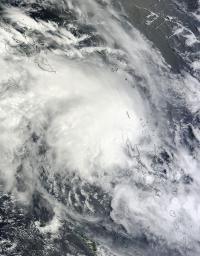 MODIS Image of Lusi