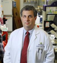 Jonathan Powell, M.D., Ph.D., Johns Hopkins Medicine