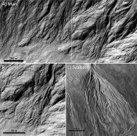 Debris Flows on Mars