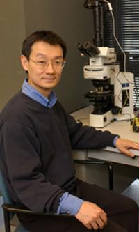 Yan-Yeung Luk, Syracuse University