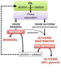 Biodiesel Process