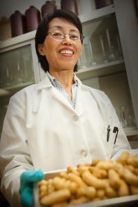 Dr. Jianmei Yu, North Carolina A&T State University