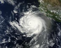 Terra Image of Cristina