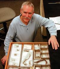 Pre-Clovis Human Evidence