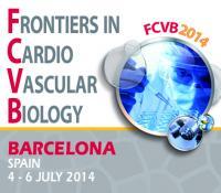 FCVB 2014