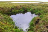 Thermokarst Lakes