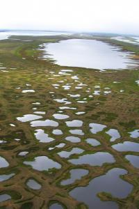 Thermokarst Lakes Aerial