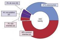 Autism's Genetic Architecture