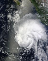 Terra Image of Hernan