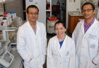 Peripheral Vascular Disease Research