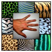 Diverse Patterns