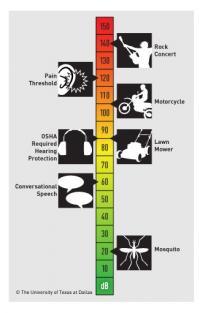 Sound Exposure Scale