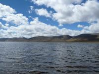 Northeastern Shoreline of Lake Junín, Peru