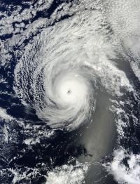 MODIS Image of Iselle