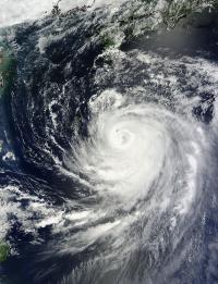 MODIS Image of Halong