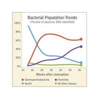 Bacterial Population Trends