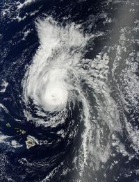 Terra Image of Julio