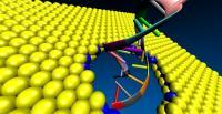 MoS2 Nanopore