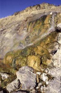 LaDuke Hot Spring in Gardiner, Montana