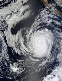 Terra Image of Marie
