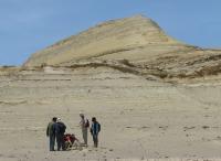 ExaminatioUllujaya, Piscon of fossil cetacean remains in the locality of Ullujaya, Pisco Basin, Peru