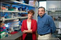 Jennifer Cochran and Amato Giaccia, Stanford School of Engineering
