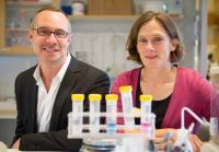Jorge Ruas and Maria Lindskog, Karolinska Institutet