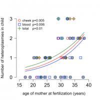 Maternal Age Effect