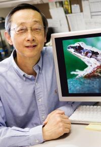 Albert Feng