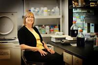 Shelley Minteer, University of Utah