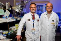 Pradeep Sahota and Mahesh Thakkar, University of Missouri School of Medicine