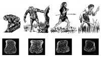 Bone Density Illustration